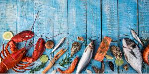 5 MANFAAT BERIKUT INI AKAN MEMBUAT KAMU MENGONSUMSI SEAFOOD
